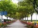 华南陵园风景2
